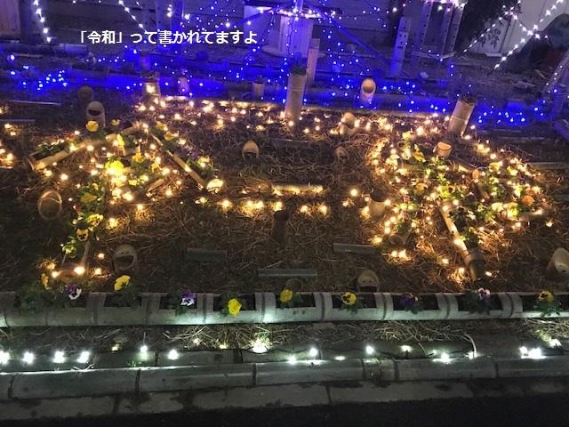 12月の夜は賑やか♪_f0242002_13132403.jpg