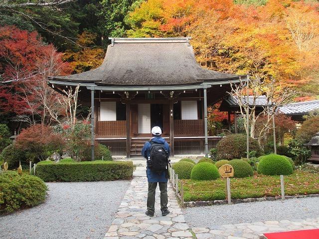 京都大原寂光院紅葉_b0163804_10514056.jpg