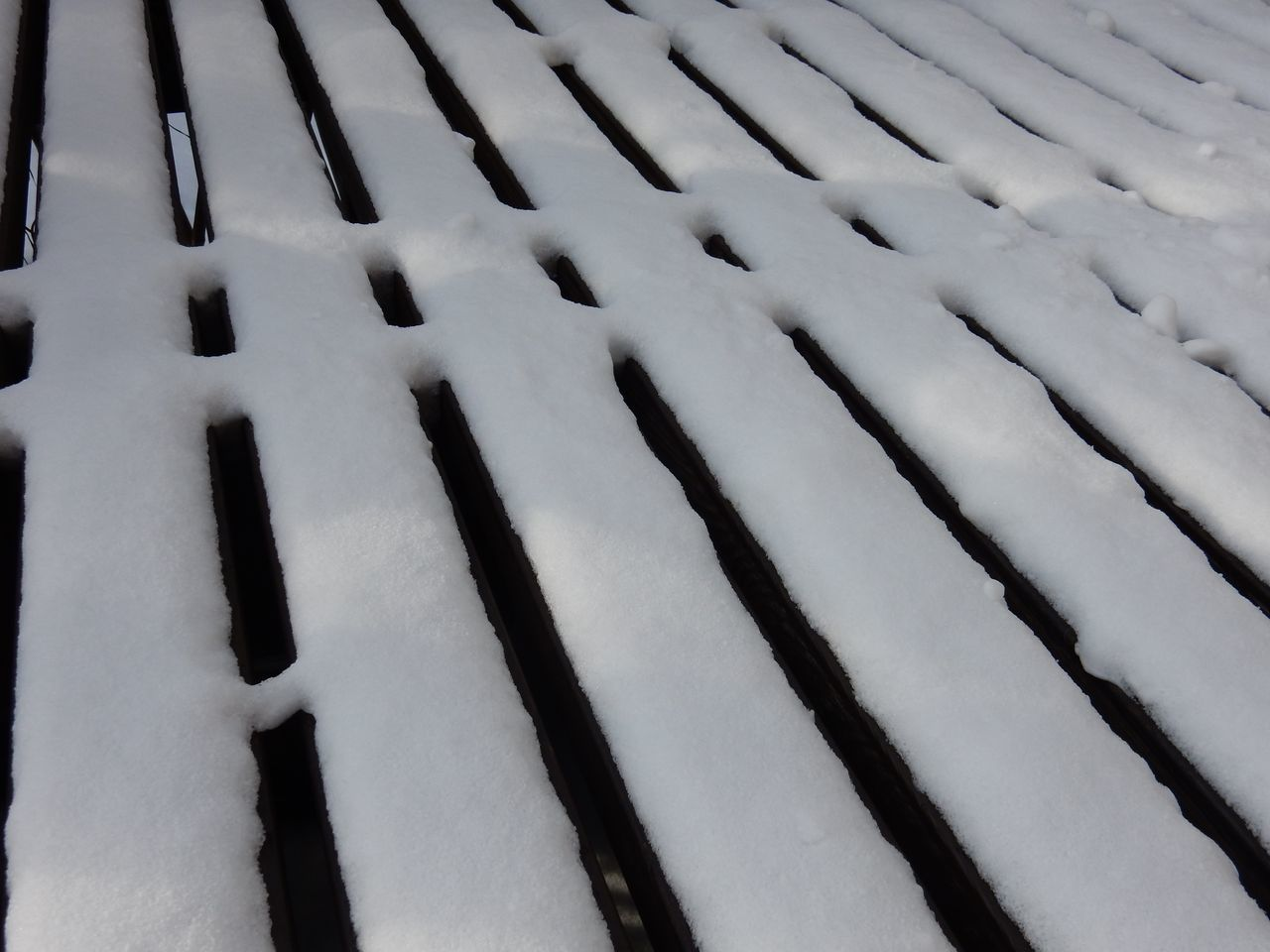 昨日よりはほんのちょっとだけ暖かくなったようです_c0025115_21462353.jpg