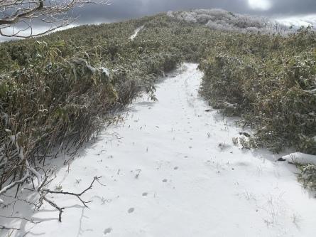 ひとまず登山シーズン終了です。_f0101226_21410009.jpeg