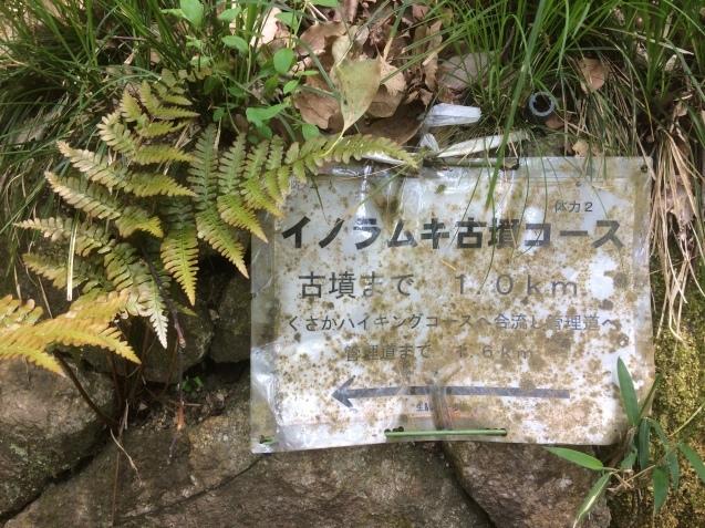 日本の記紀は終わる_b0409627_01063307.jpg