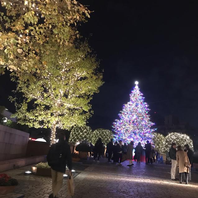 2019\' 12月のお休み_d0160931_14391491.jpg