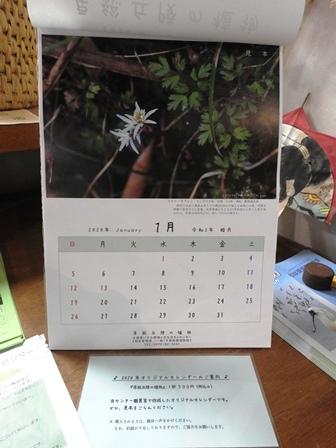 やっと晴れました/カレンダーはいかが?_a0123836_15270239.jpg