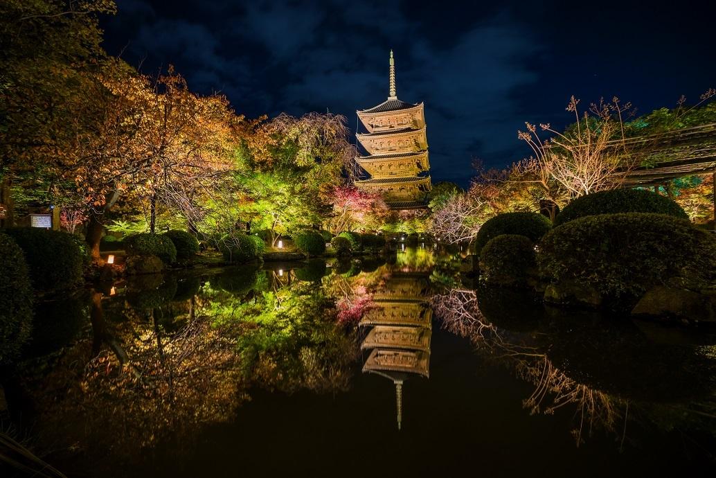 2019京都紅葉~東寺ライトアップ_e0363038_10273900.jpg