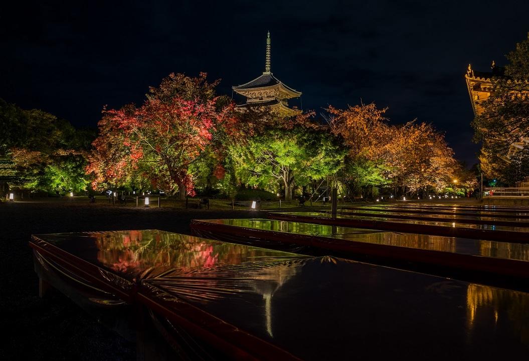 2019京都紅葉~東寺ライトアップ_e0363038_10275026.jpg