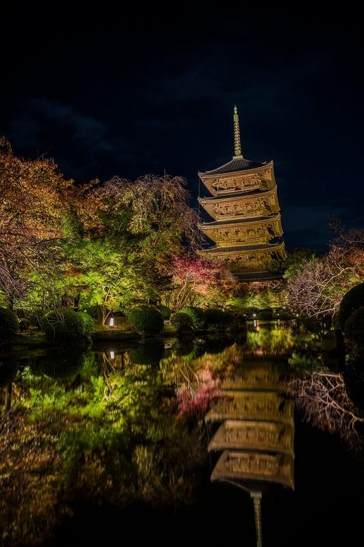 2019京都紅葉~東寺ライトアップ_e0363038_10280157.jpg