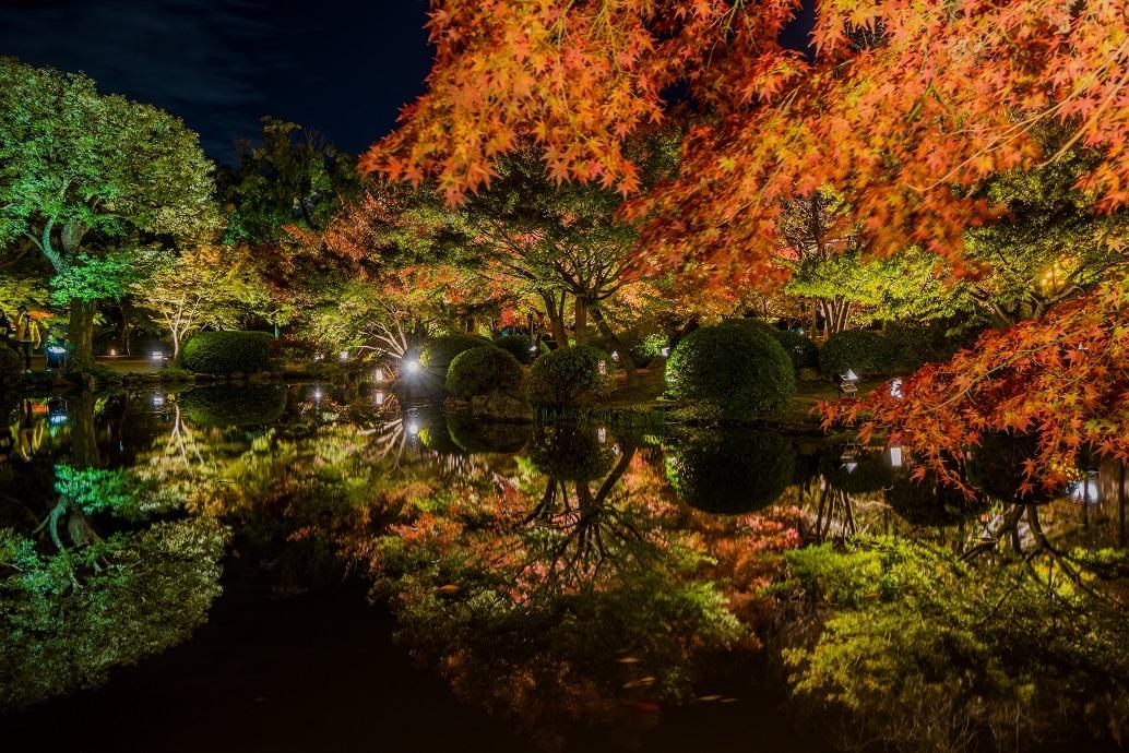 2019京都紅葉~東寺ライトアップ_e0363038_10281969.jpg