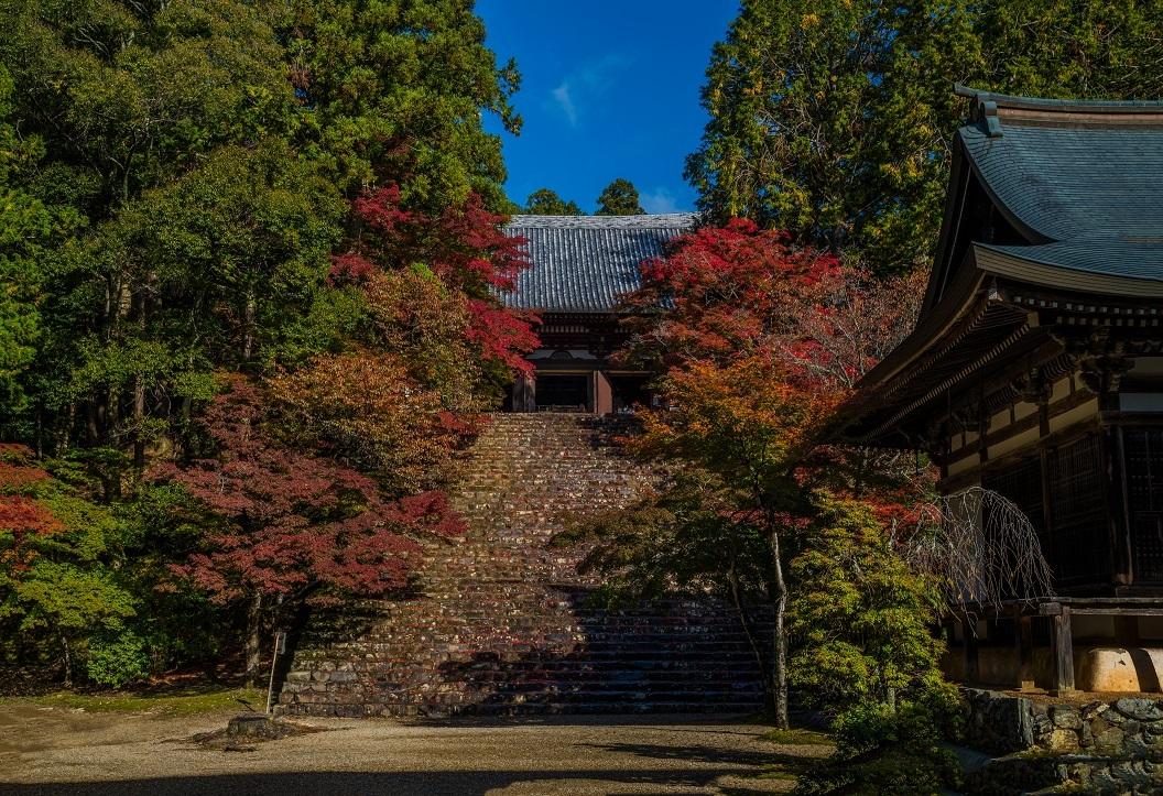 2019京都紅葉~神護寺_e0363038_10464483.jpg