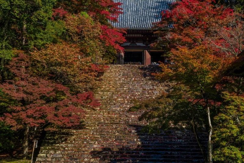 2019京都紅葉~神護寺_e0363038_10465842.jpg