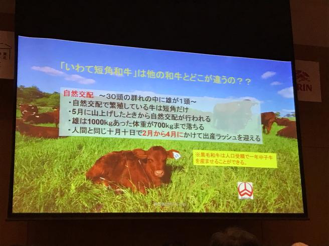 東北の農と食を世界へ_b0199244_16560258.jpg