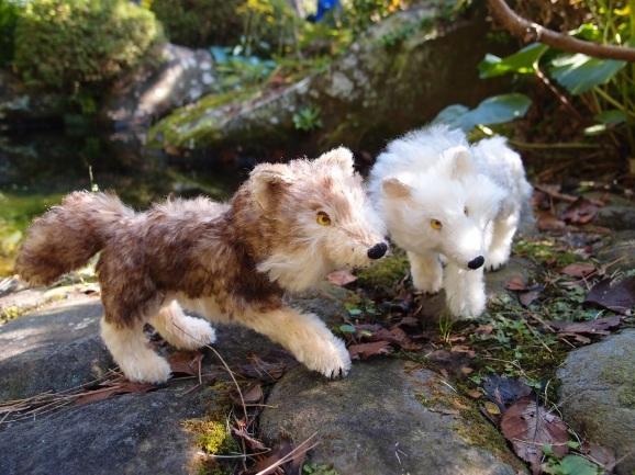 自在オオカミの群れ_c0191646_08205630.jpg
