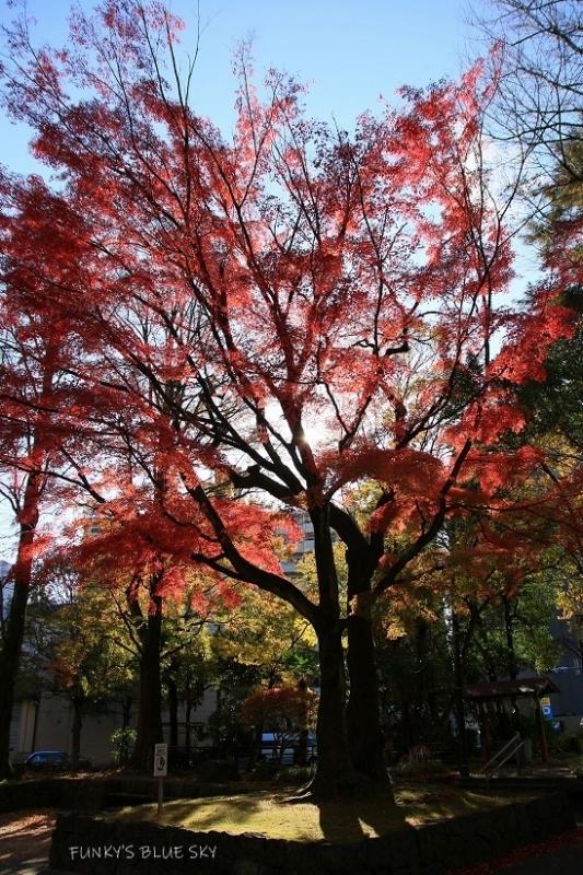 街の公園_c0145250_09284852.jpg