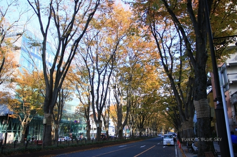 街の公園_c0145250_09285856.jpg