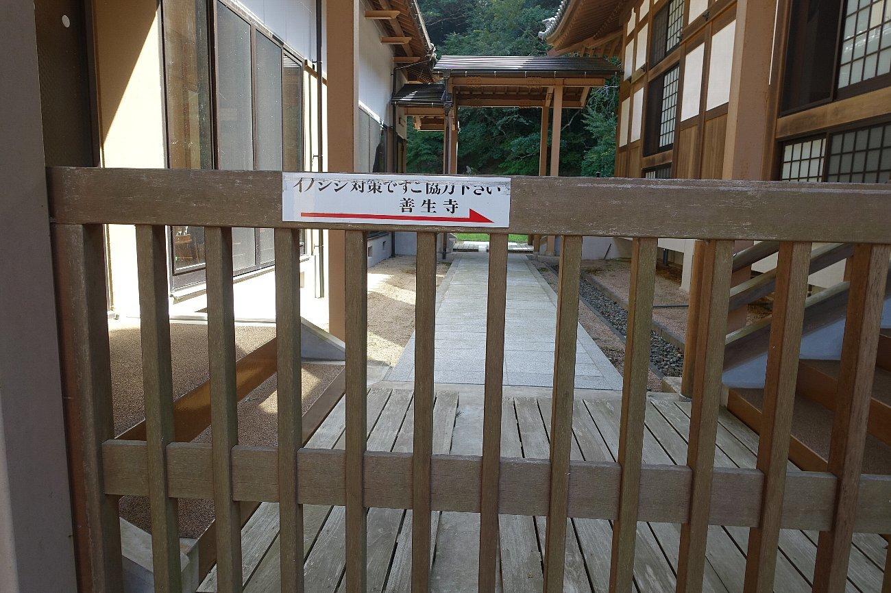 善生寺庭園_c0112559_08260347.jpg