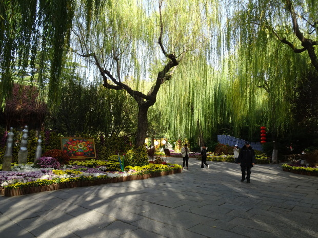 済南市、公園で、、_d0193569_07521927.jpg