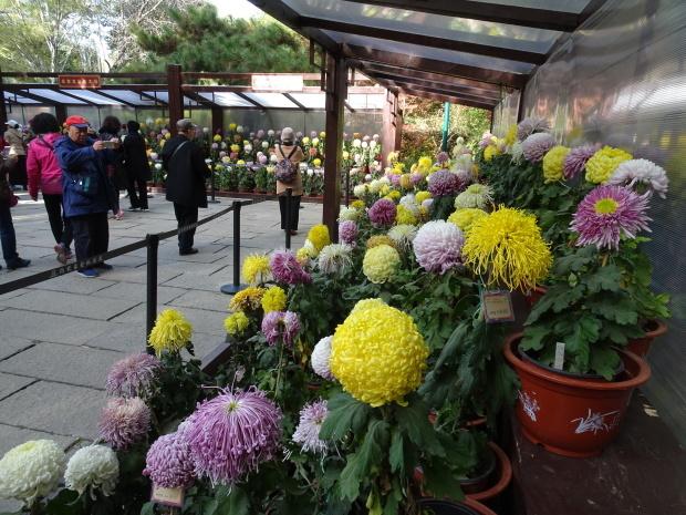 済南市、公園で、、_d0193569_07532783.jpg