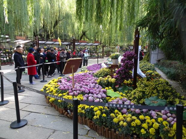 済南市、公園で、、_d0193569_07533880.jpg