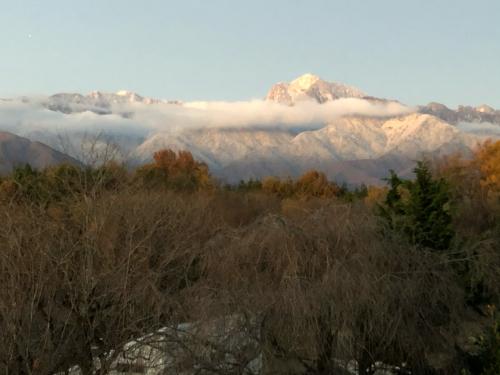 秋は終わりました。冠雪、見事な冠雪、大阪から6にん、おばちゃん。大喜び。冬の始まり。_d0338282_06192272.jpg