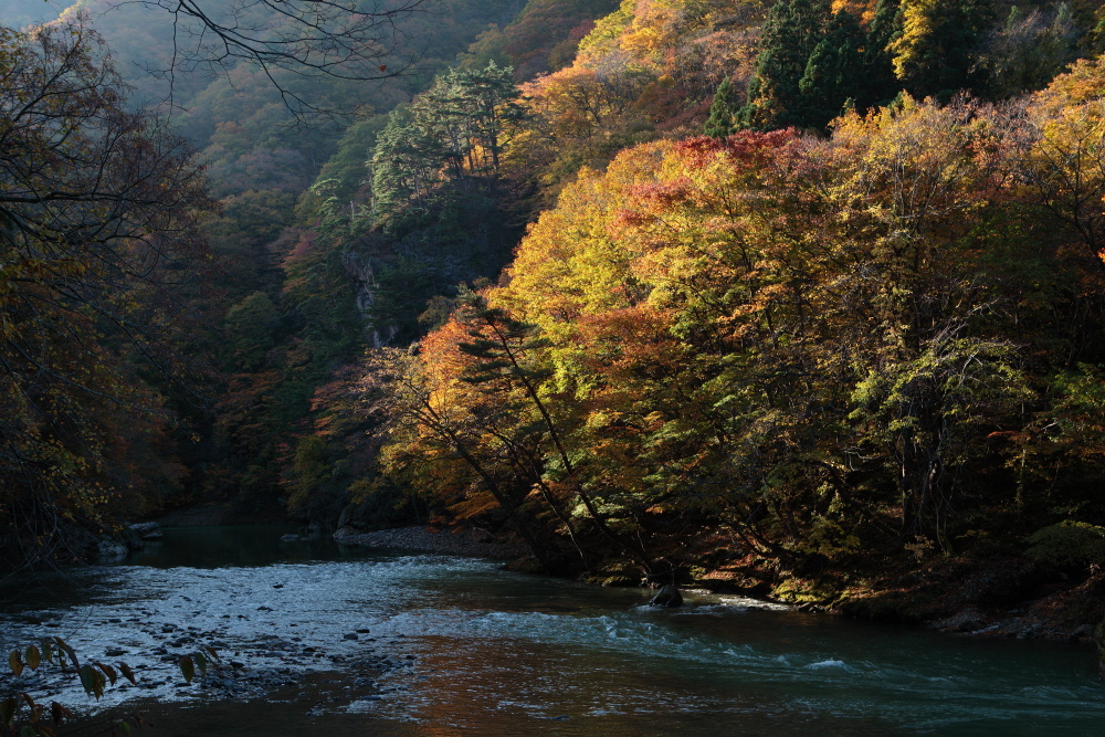 鹿角市 湯瀬渓谷の紅葉に朝日があたる その3_e0165983_09400525.jpg