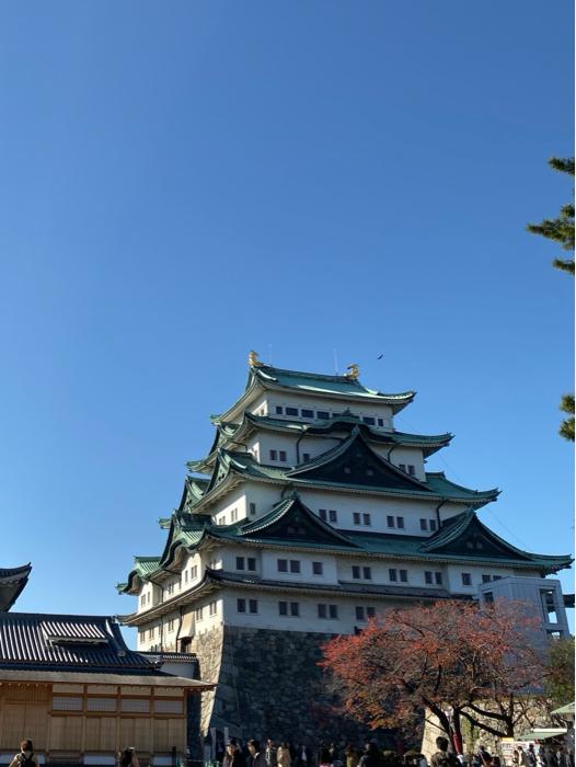 今日は動物園と名古屋城、強行スケジュールで歩きました。_b0175688_20071574.jpg
