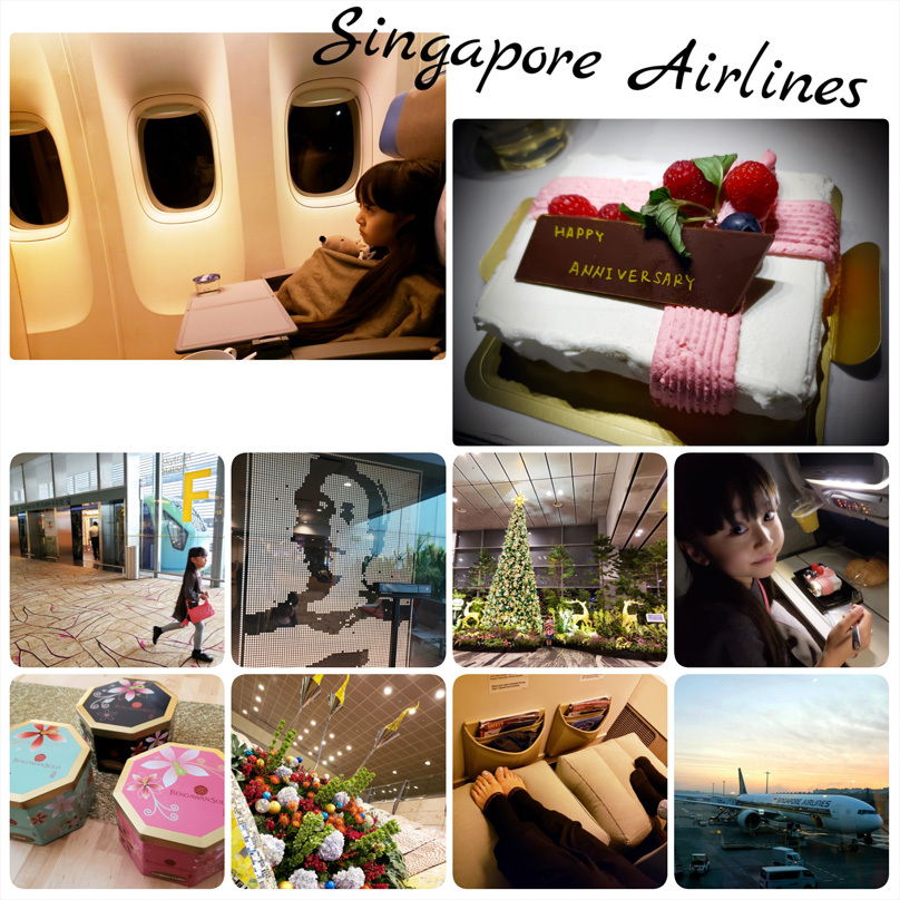 シンガポール航空とチャンギ国際空港(行き/帰り)_d0224894_10510817.jpg