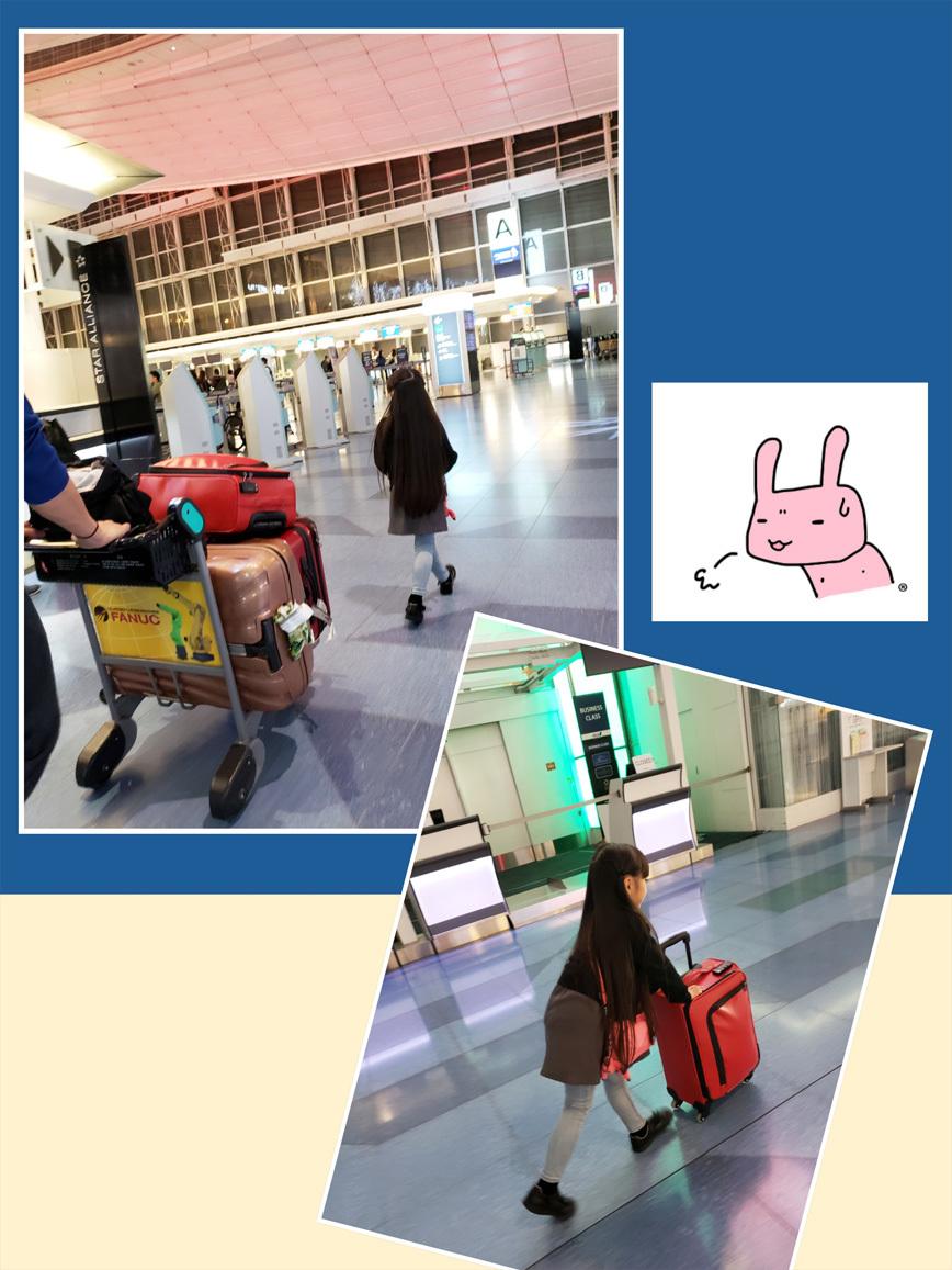 シンガポール航空とチャンギ国際空港(行き/帰り)_d0224894_11195823.jpg