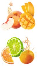 【RSP73】紅茶×フルーツ×HOT!『フルーツインティーシリーズ』Liptonリプトン_a0057402_07323266.png