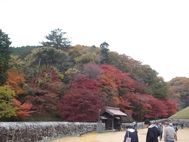 特別史跡旧閑谷学校の紅葉~熊山遺跡_f0197703_12090331.jpg