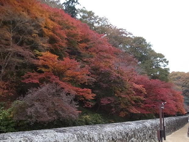 特別史跡旧閑谷学校の紅葉~熊山遺跡_f0197703_12115064.jpg