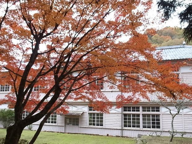 特別史跡旧閑谷学校の紅葉~熊山遺跡_f0197703_12165032.jpg