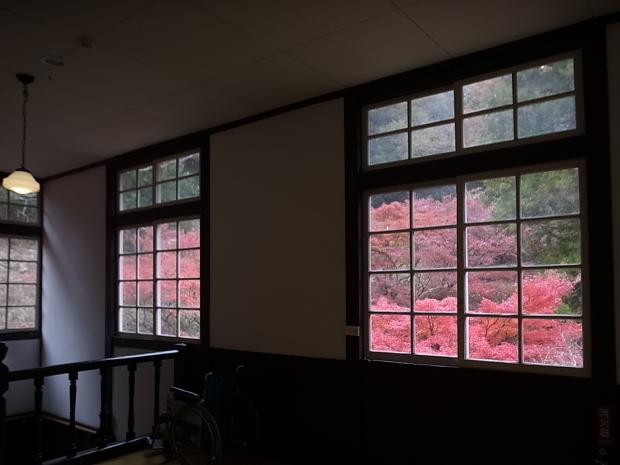 特別史跡旧閑谷学校の紅葉~熊山遺跡_f0197703_12182543.jpg