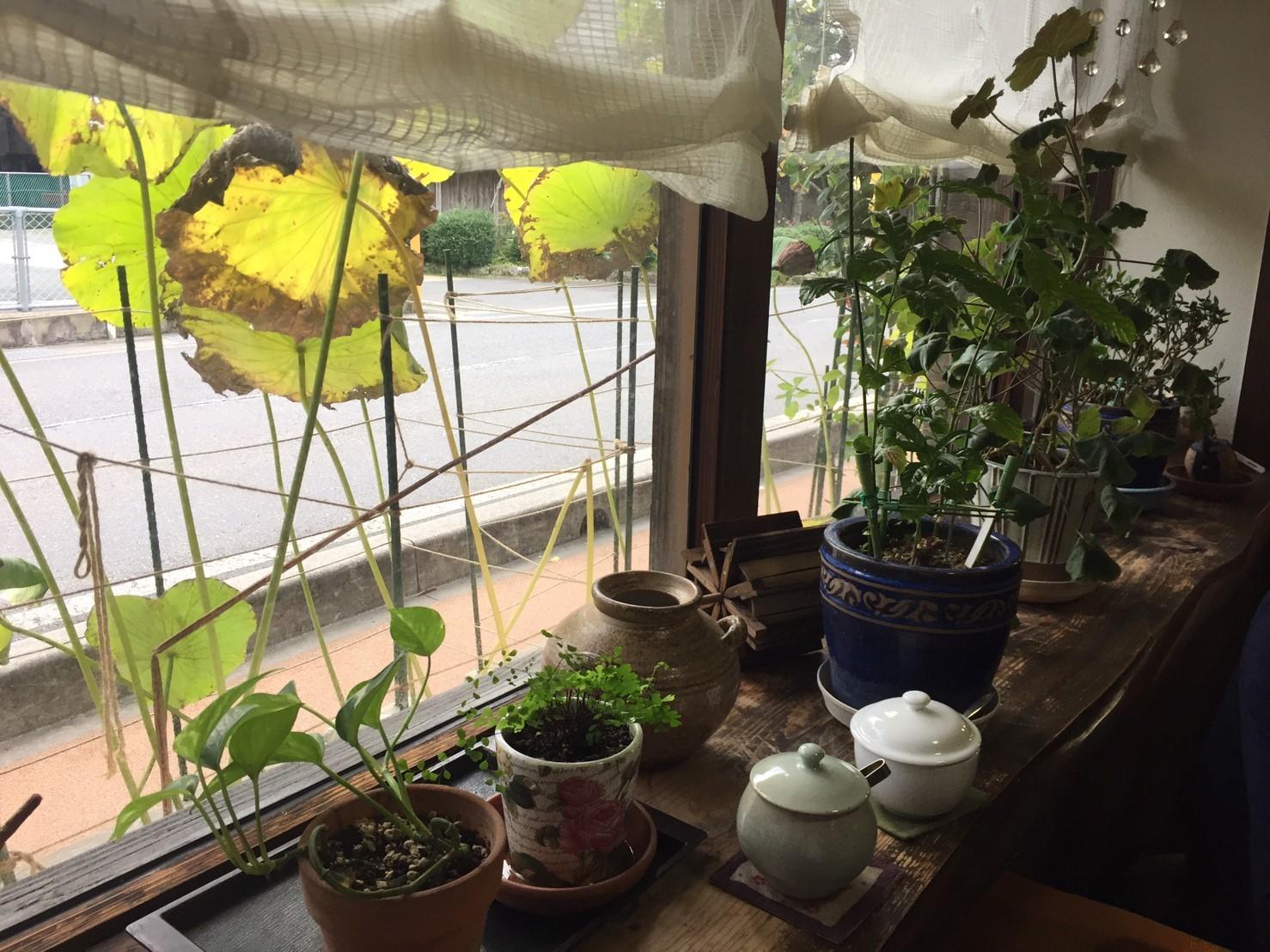 喫茶フォルダー 10_e0115904_14280562.jpg