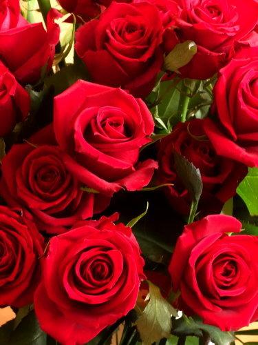 32回目の結婚記念日_b0254207_21355425.jpg