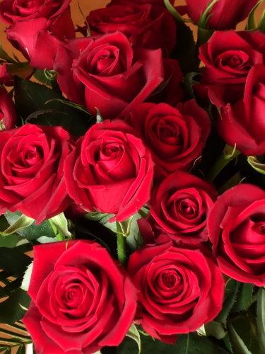 32回目の結婚記念日_b0254207_21360653.jpg
