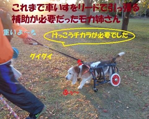 f0121712_01172752.jpg