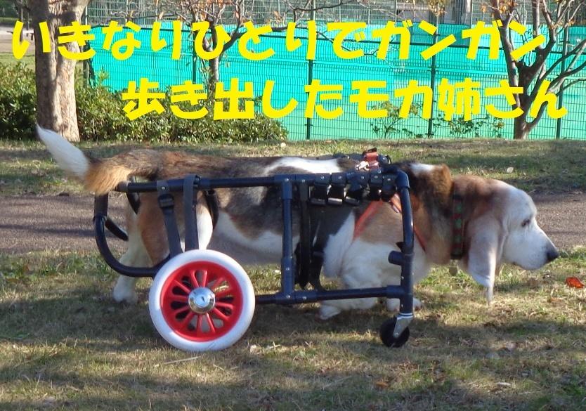 f0121712_01334693.jpg