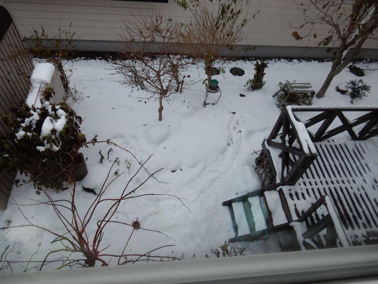 雪止むもとけず_c0025115_21361353.jpg