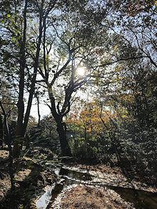 朝陽_e0103024_12261249.jpg