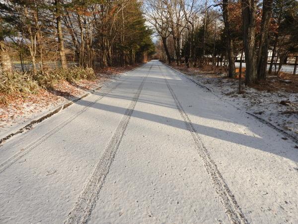 積雪5ミリ:路面凍結注意!(2019年11月30日)_b0174425_07513902.jpg