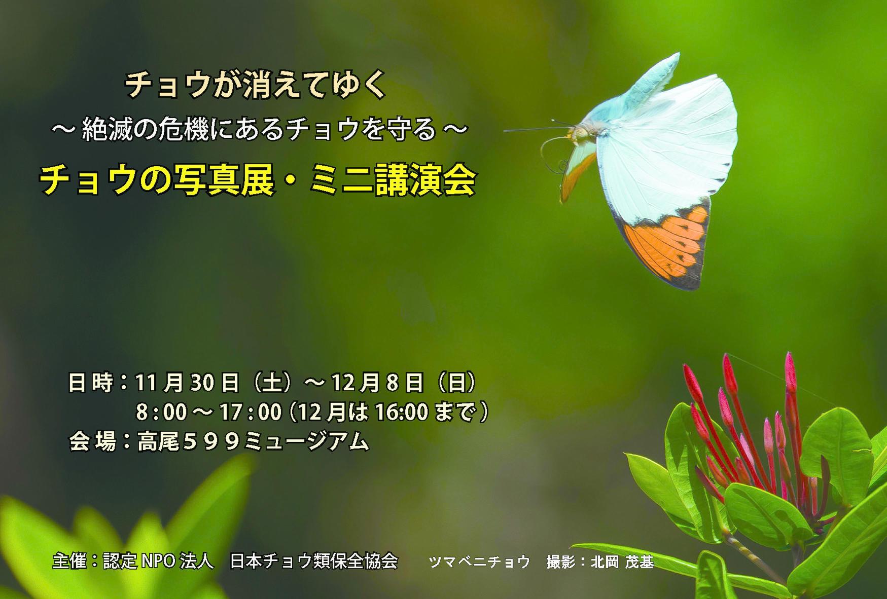 2019年 チョウ類保全協会企画展(今年は高尾山口)_d0054625_08574349.jpg