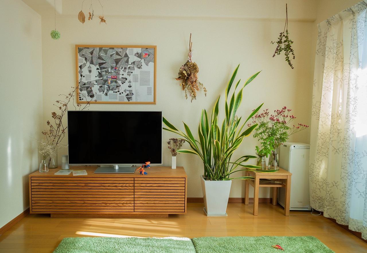 scene1547:植物がある光景_e0253132_17411567.jpg