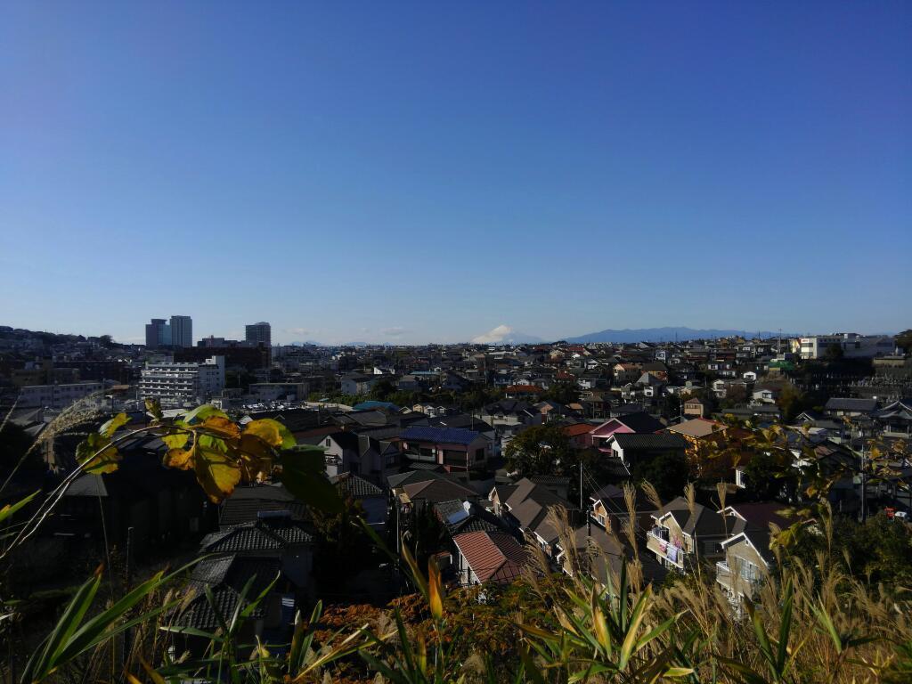 ⑪富士山ロ