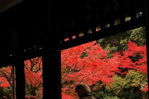なのにあなたは京都へ行くの_e0241944_22460230.jpg