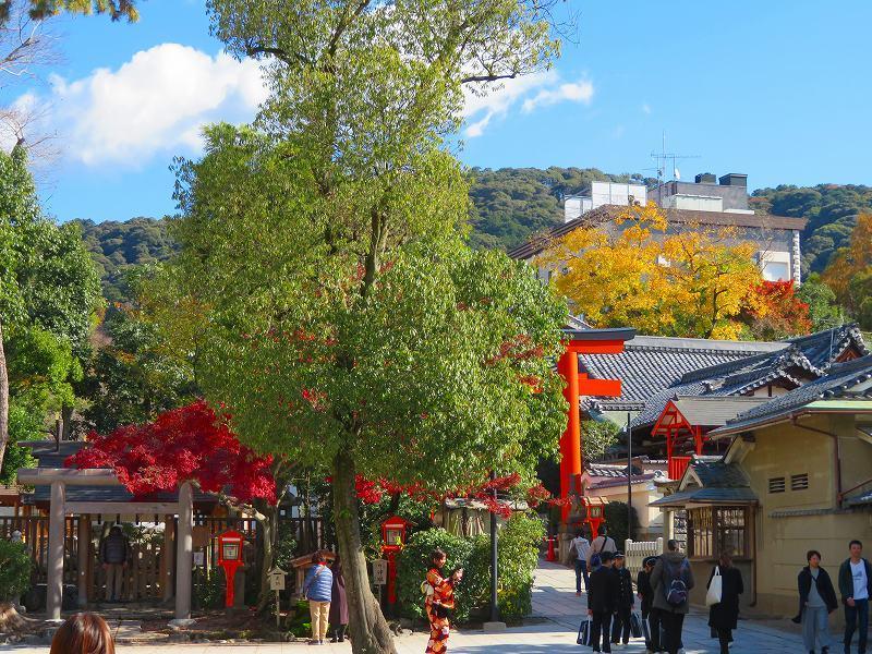 八坂神社の参拝20191129_e0237645_11270254.jpg
