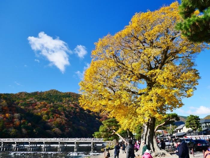 嵯峨・嵐山めぐり、1 嵐山  2019-12-02 00:00    _b0093754_23411565.jpg