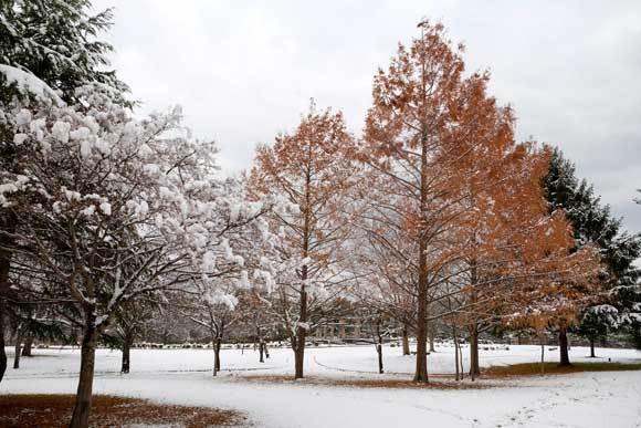 冬の散歩_e0220159_19174253.jpg