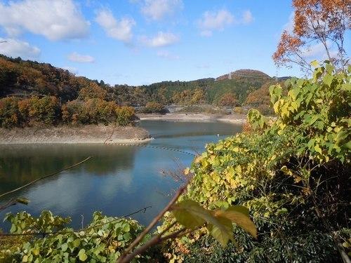公園の紅葉もそろそろ見納めです_b0102572_14225204.jpg