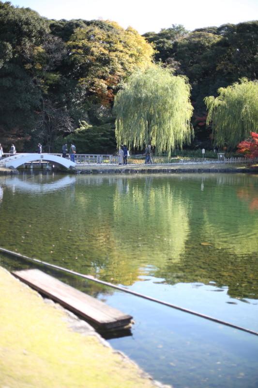 徳川園_f0367980_16351574.jpg