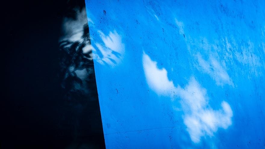 旬の味わいの青い光蜥蜴_d0353489_15471899.jpg