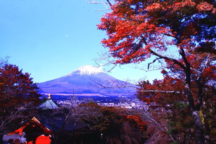 令和元年11月の富士(21)御殿場平和公園からの富士_e0344396_21244892.jpg